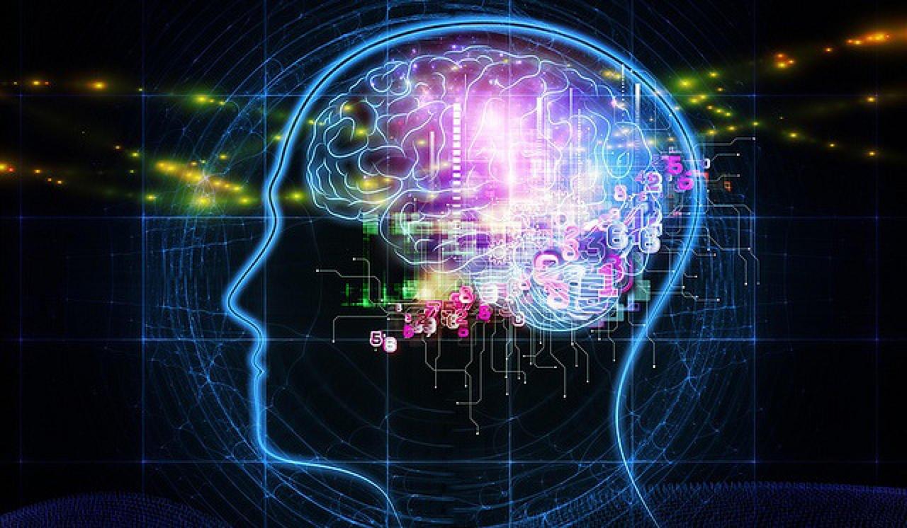 Traumatic Brain Injury Attorney Discusses Alleged Long Island DWI