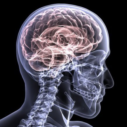 NYC Traumatic Brain Injury Attorney Examines The Challenges of Evaluating The Psychological Effects of TBI