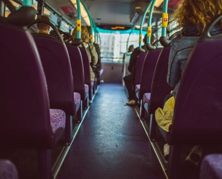 What Should You Do After a Bus Accident?